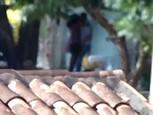 Video voyeur filmant un couple qui baise en pleine rue !